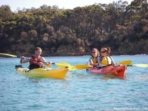 Kayak Tours Gulf Shores