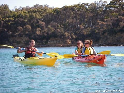 South Beach Kayak Camping